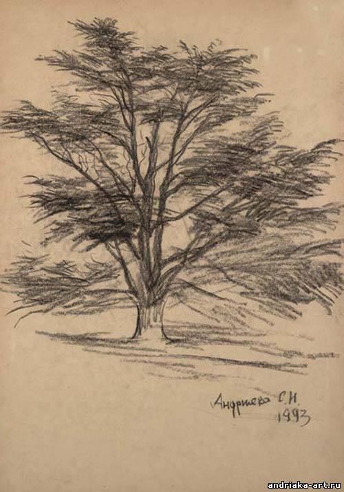 Андрияка рисует дерево